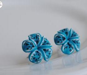 Turquoise Frangipani Butterfly Wing Flower Earrings